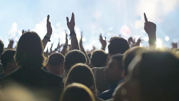 Mit VREE auf tolle Konzerte gehen